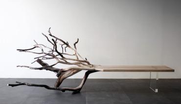 """Benjamin Graindorge's """"Fallen Tree"""" (2011)"""