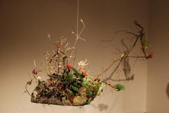 "Gerda Steiner and Jörg Lenzlinger's ""The Last Wilderness for Patent Nr. PBR'RYN2008019"" (2013)"